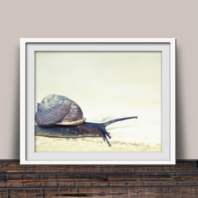 SNAIL ON A JOURNEY View amp fave in my EtsyShophellip