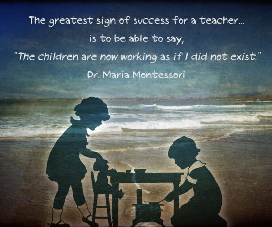 The Greatest Sign of Success Quote by Maria Montessori